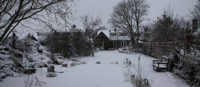 Een mooie witte tuin