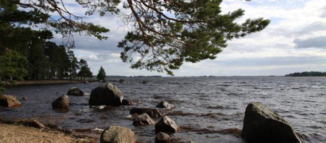 Hedesunda camping op Ön
