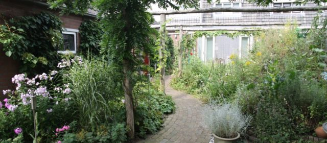 Duurzaamste tuin 2013!